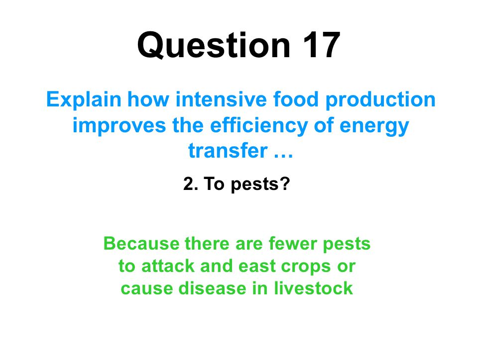 Question 17 Explain how intensive food production improves the efficiency of energy transfer … 2. To pests