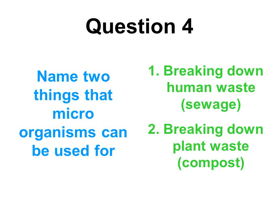 Question 4 Name two things that micro organisms can be used for