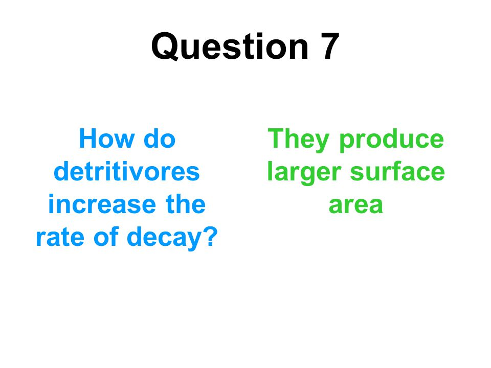 Question 7 How do detritivores increase the rate of decay