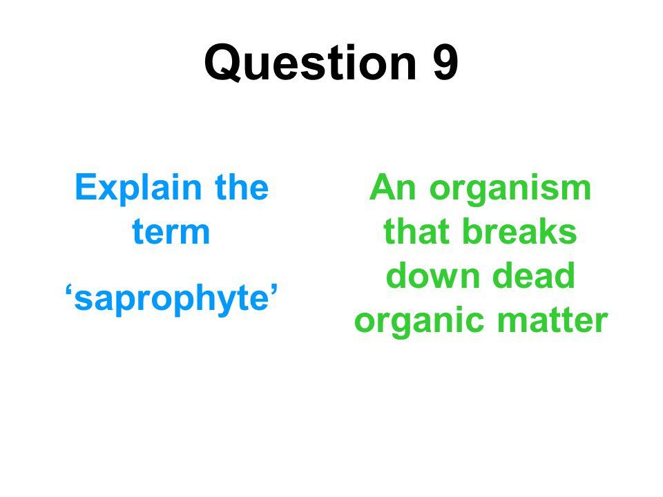 An organism that breaks down dead organic matter