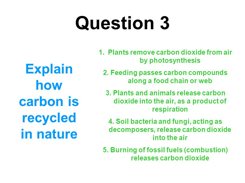 Question 3 Explain how carbon is recycled in nature