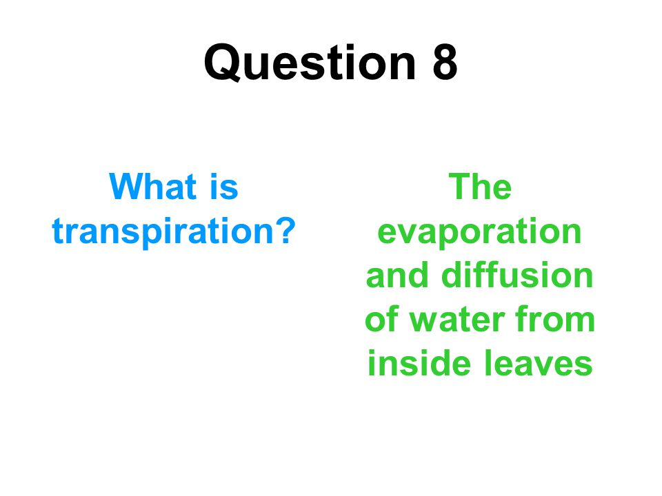 The evaporation and diffusion of water from inside leaves
