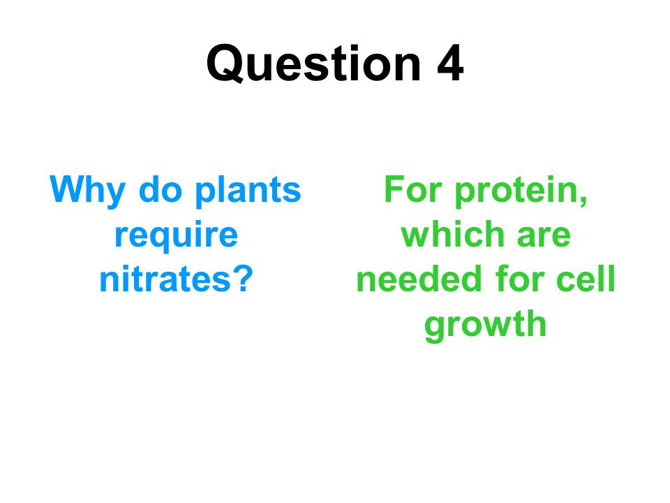 Question 4 Why do plants require nitrates