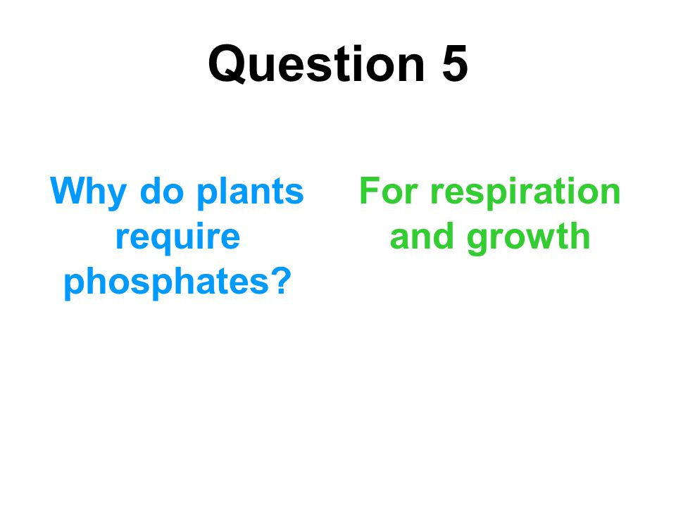Why do plants require phosphates For respiration and growth
