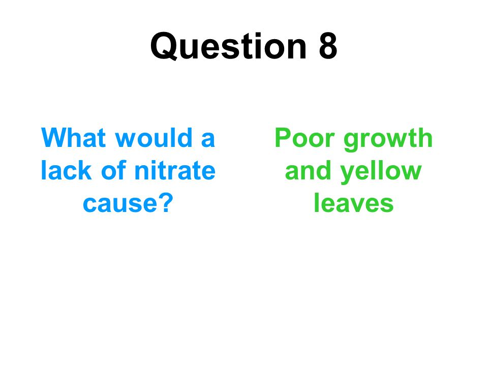 What would a lack of nitrate cause Poor growth and yellow leaves