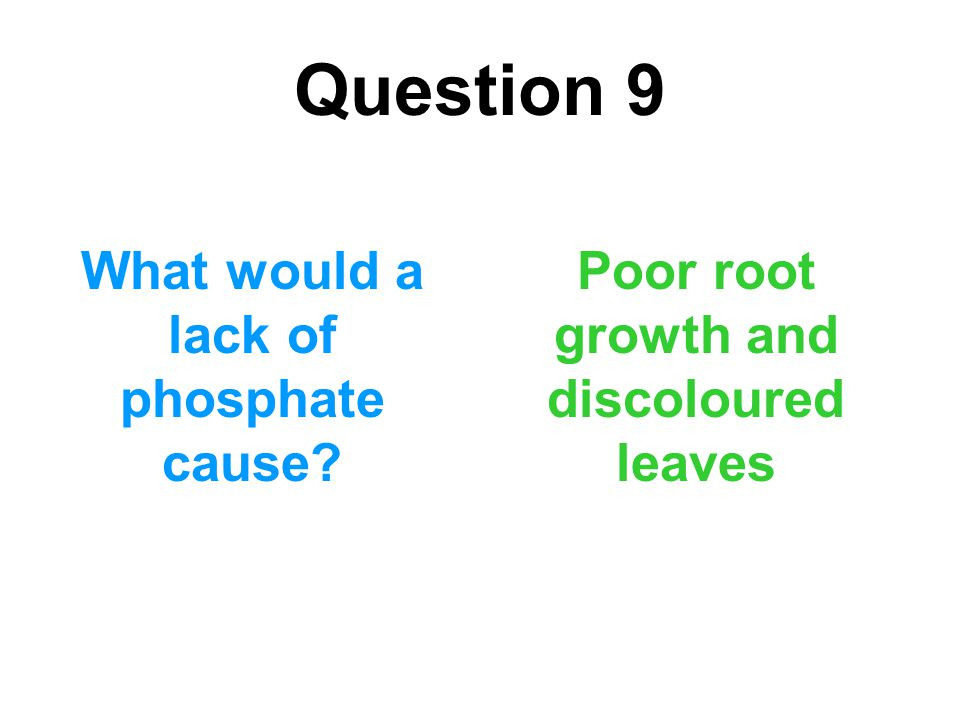 Question 9 What would a lack of phosphate cause