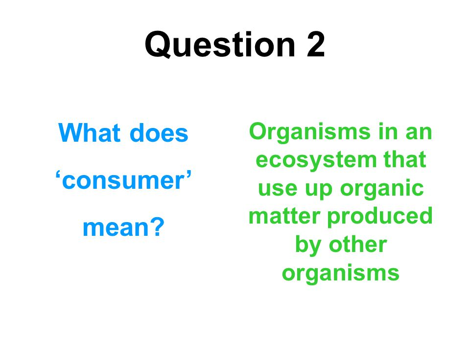 Question 2 What does 'consumer' mean