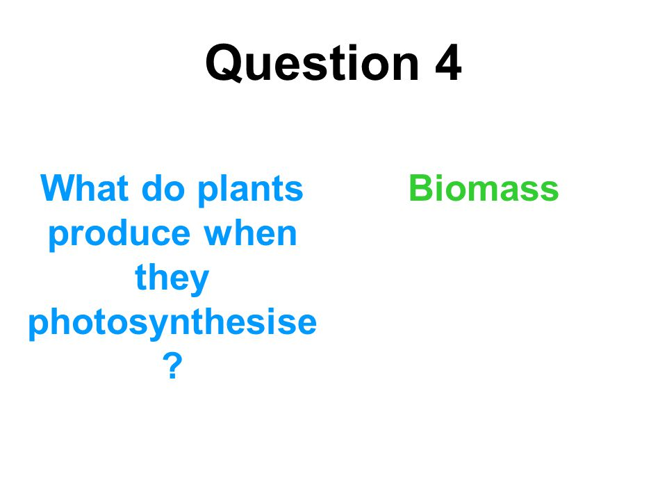 What do plants produce when they photosynthesise