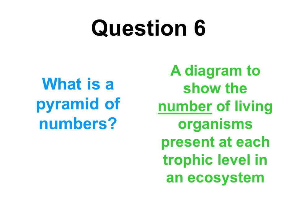 What is a pyramid of numbers