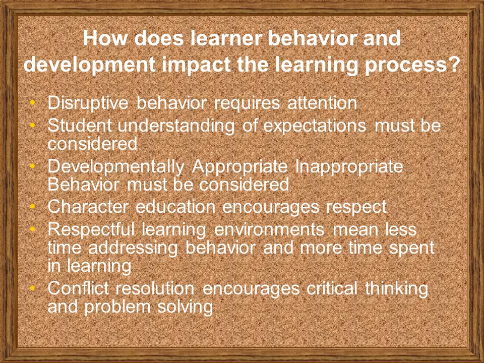 How does learner behavior and development impact the learning process