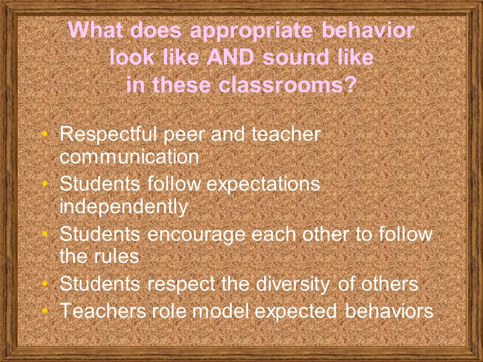 What does appropriate behavior look like AND sound like in these classrooms