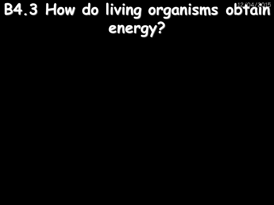 B4.3 How do living organisms obtain energy