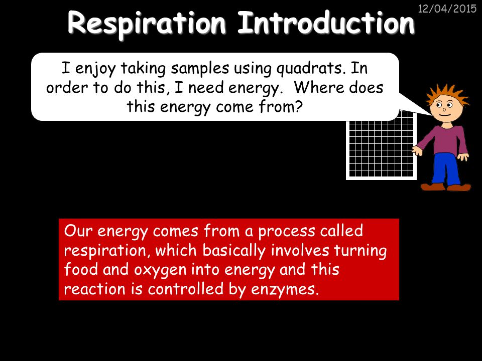 Respiration Introduction