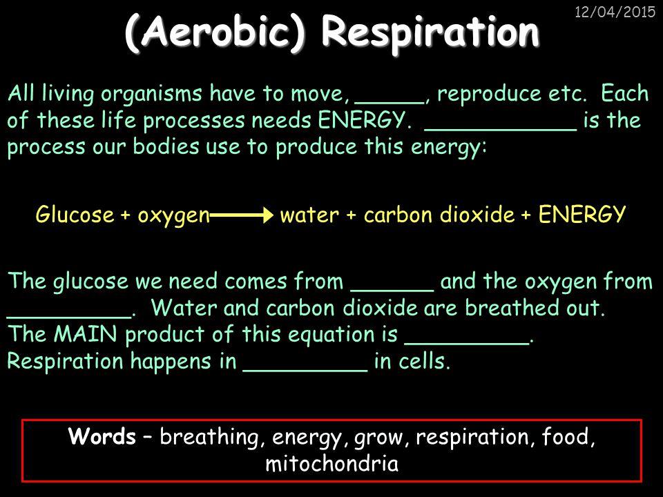 (Aerobic) Respiration