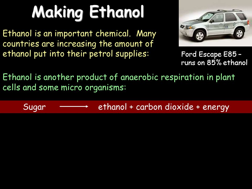 Sugar ethanol + carbon dioxide + energy