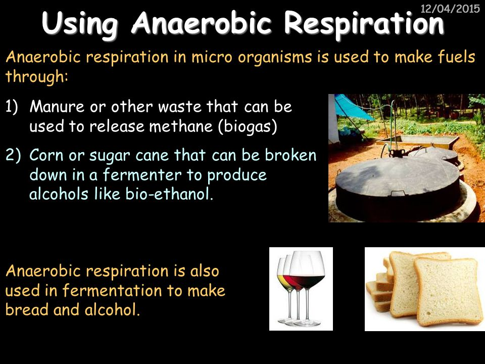 Using Anaerobic Respiration