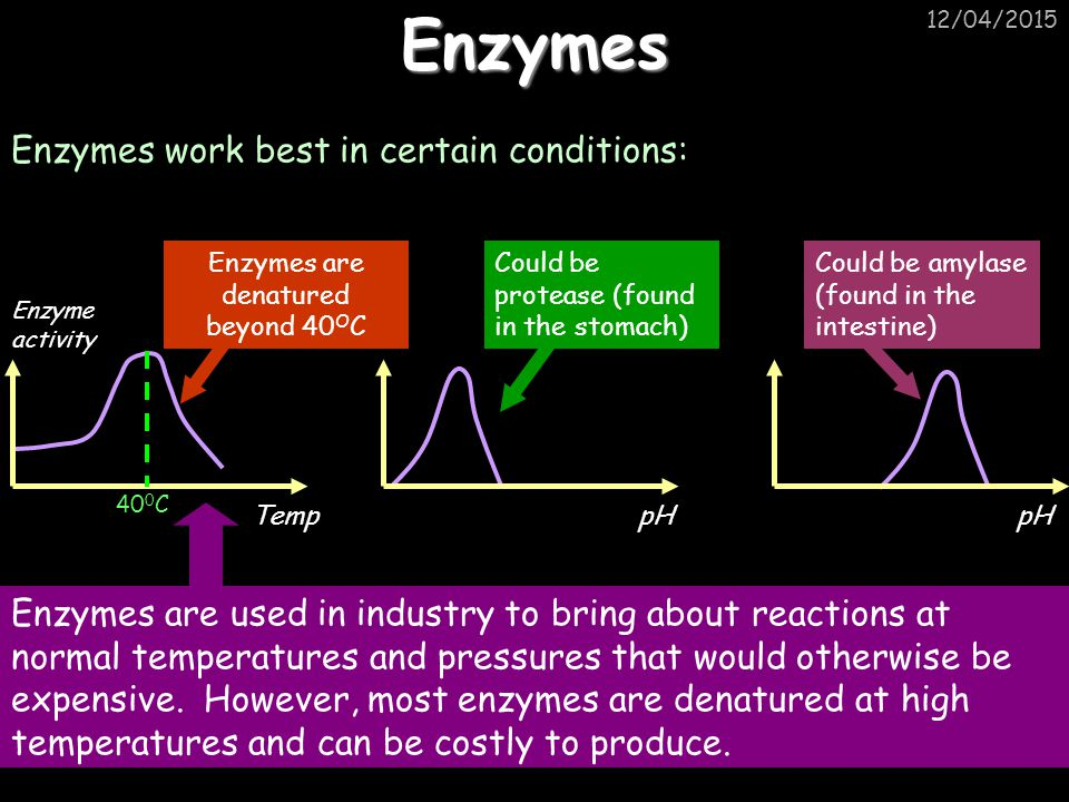 Enzymes are denatured beyond 40OC