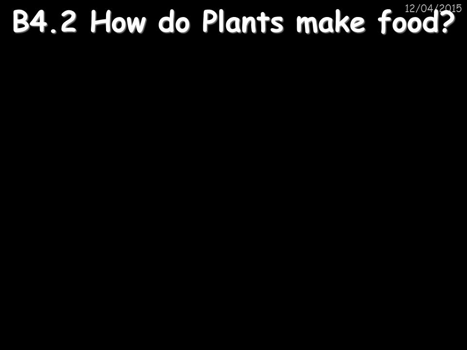 B4.2 How do Plants make food
