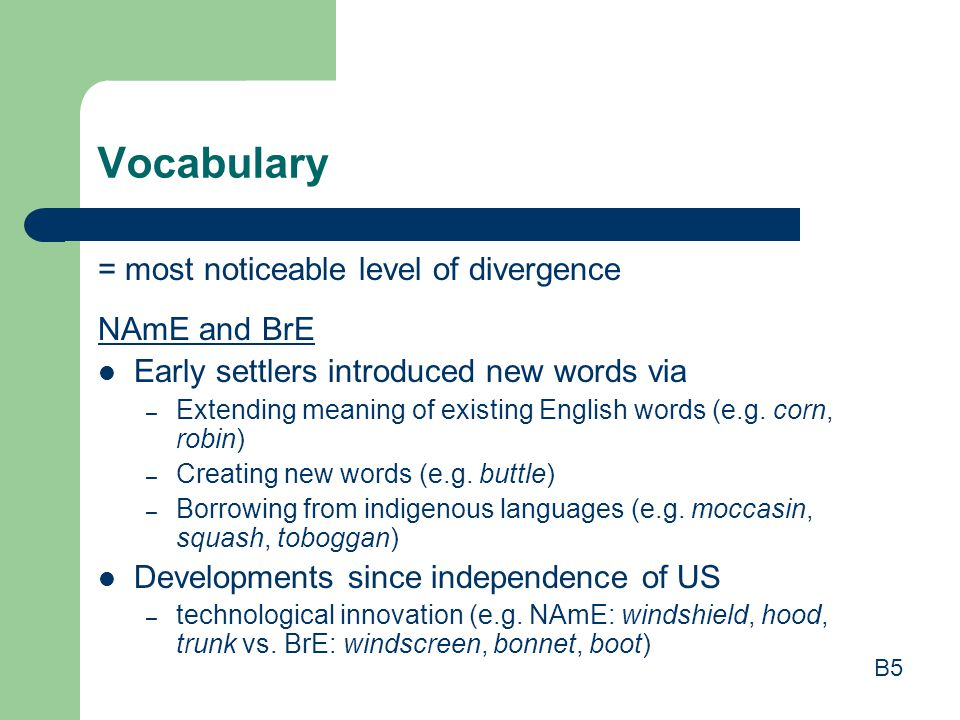 Vocabulary = most noticeable level of divergence NAmE and BrE