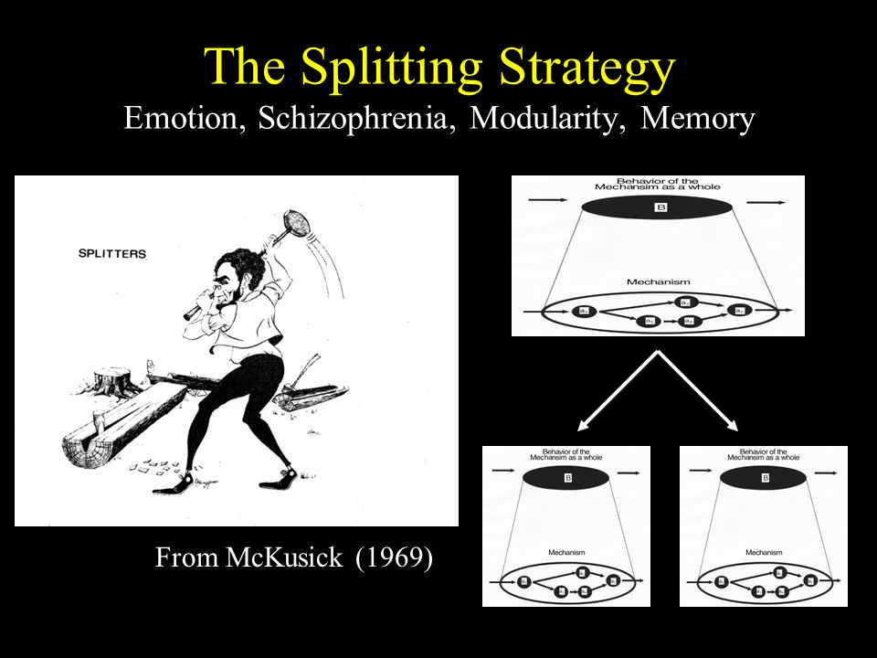 The Splitting Strategy Emotion, Schizophrenia, Modularity, Memory