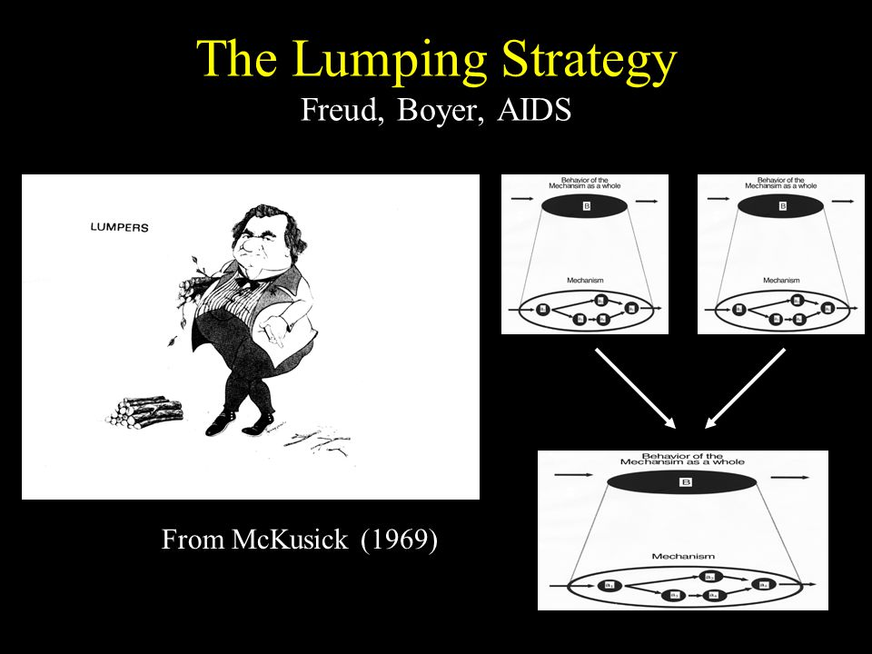 The Lumping Strategy Freud, Boyer, AIDS