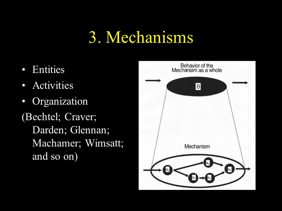 3. Mechanisms Entities Activities Organization
