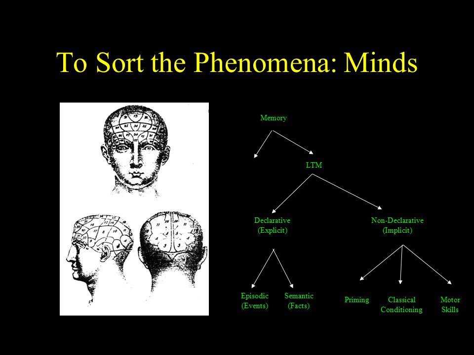 To Sort the Phenomena: Minds