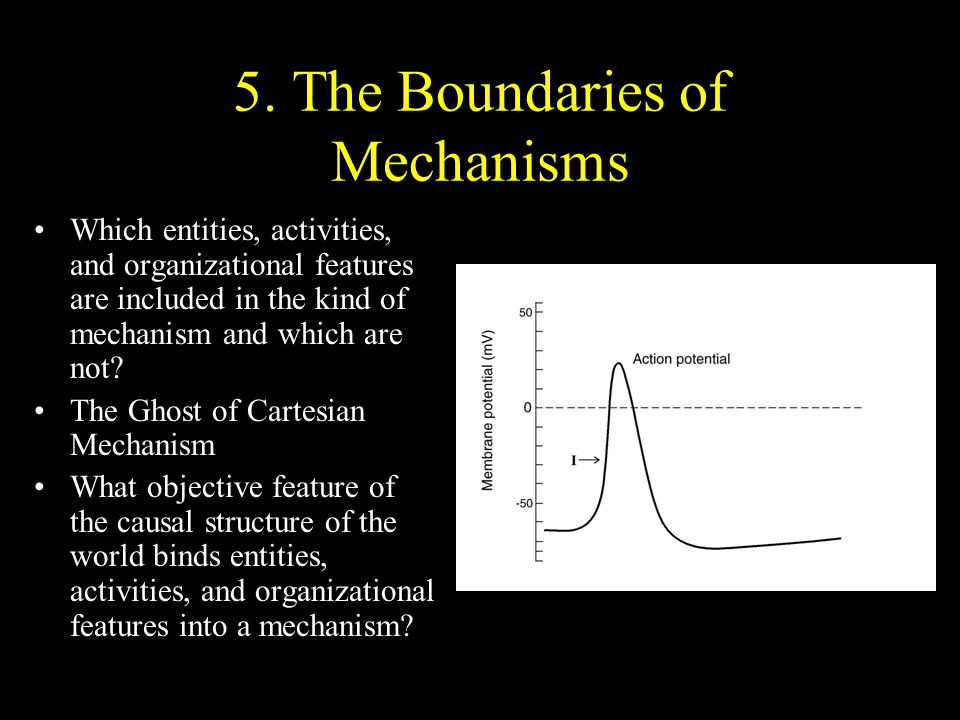 5. The Boundaries of Mechanisms