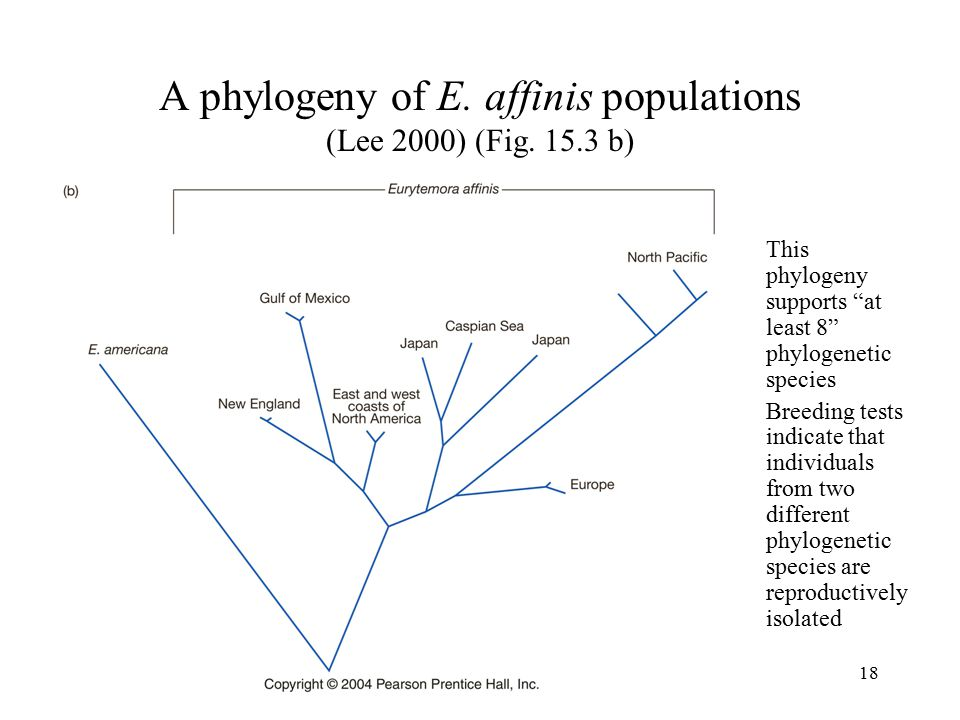 A phylogeny of E. affinis populations (Lee 2000) (Fig. 15.3 b)