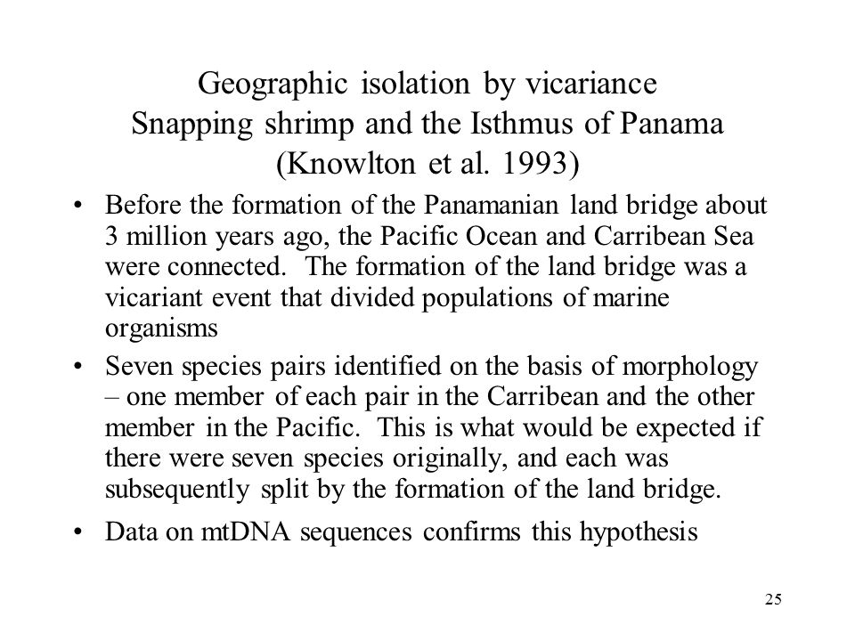 Geographic isolation by vicariance Snapping shrimp and the Isthmus of Panama (Knowlton et al. 1993)