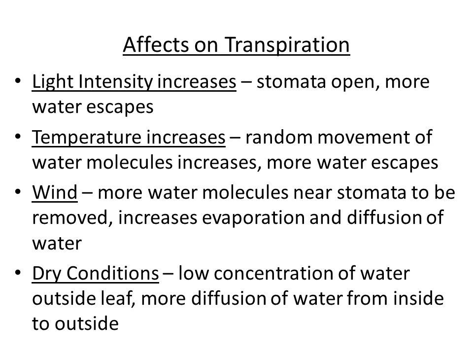 Affects on Transpiration