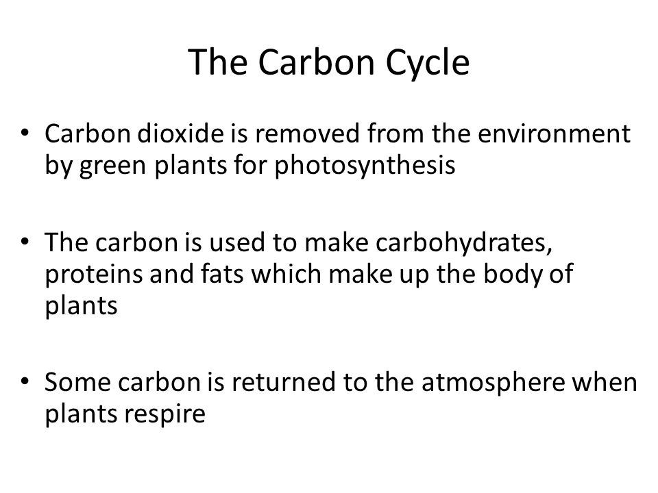 The Carbon Cycle Carbon dioxide is removed from the environment by green plants for photosynthesis.