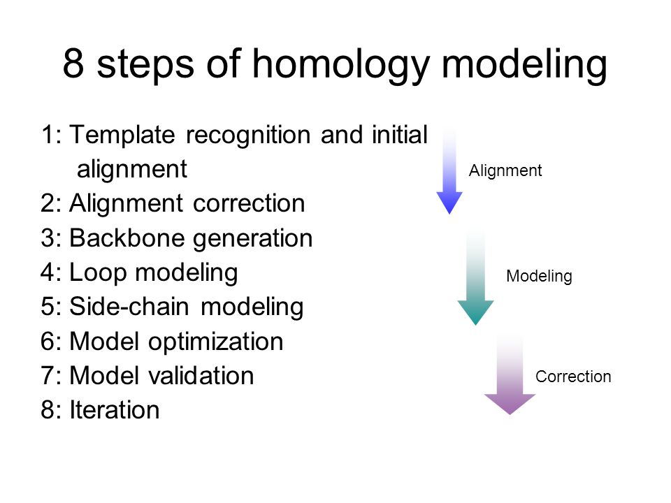 8 steps of homology modeling