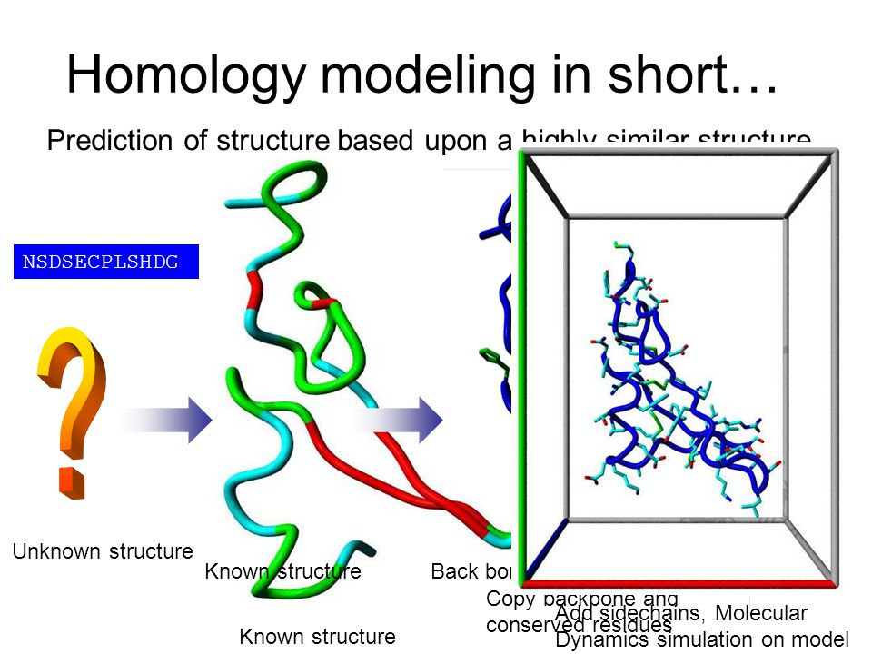 Homology modeling in short…