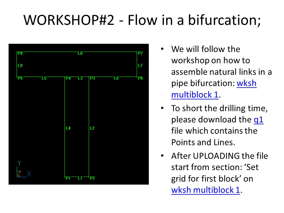WORKSHOP#2 - Flow in a bifurcation;