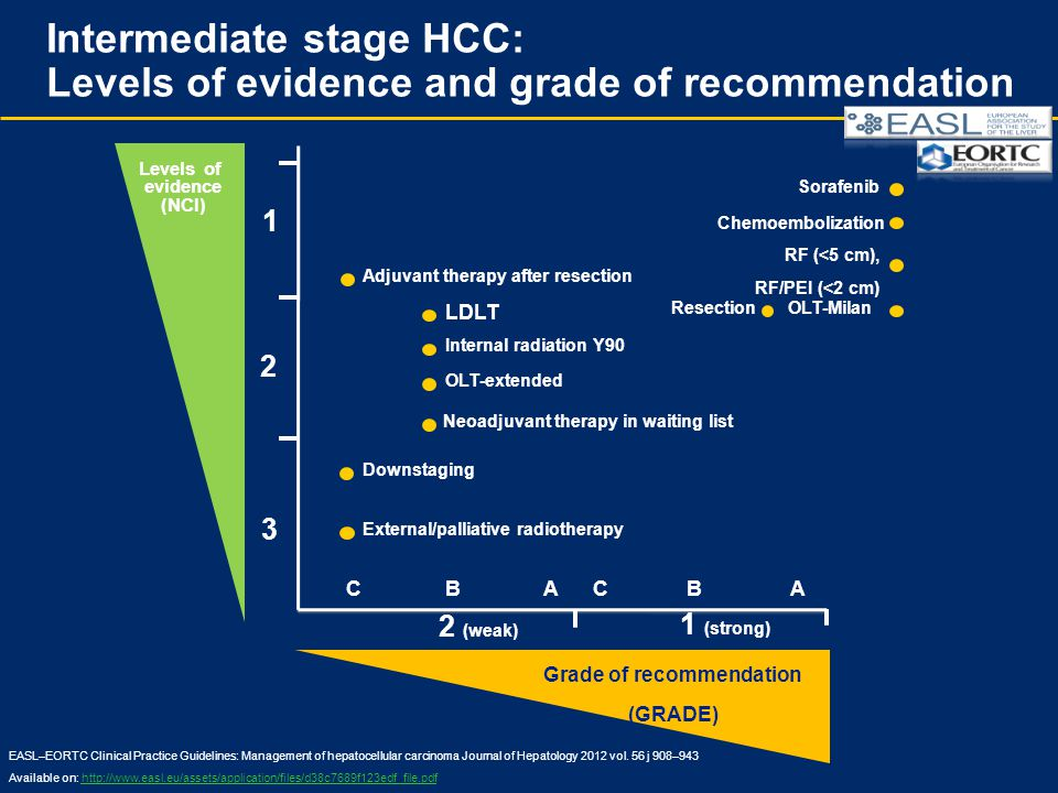 Intermediate stage HCC: Levels of evidence and grade of recommendation