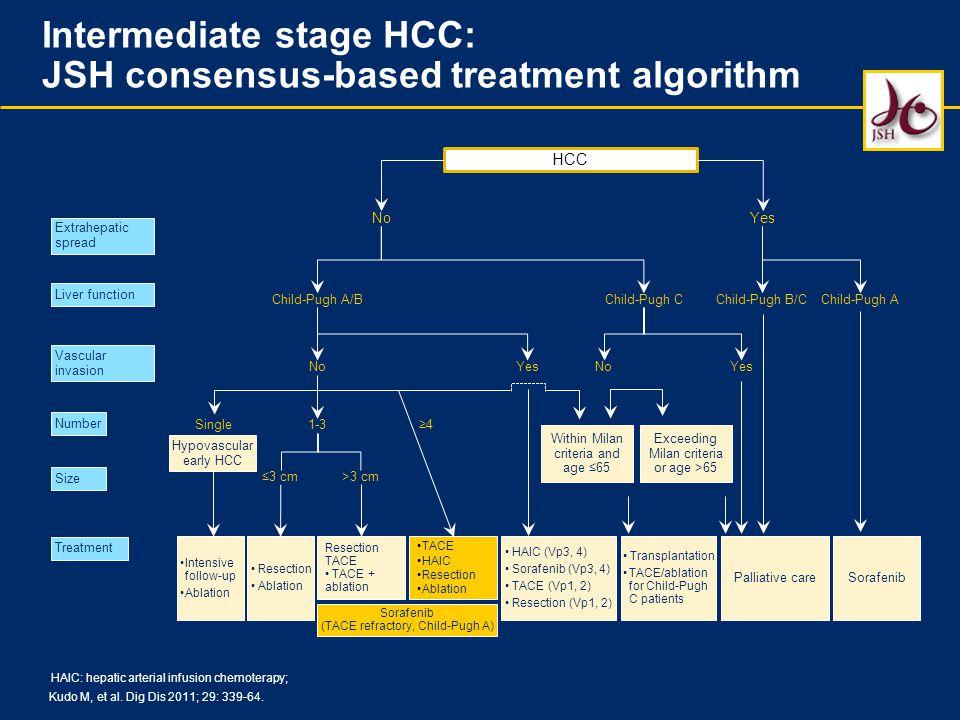 Intermediate stage HCC: JSH consensus-based treatment algorithm