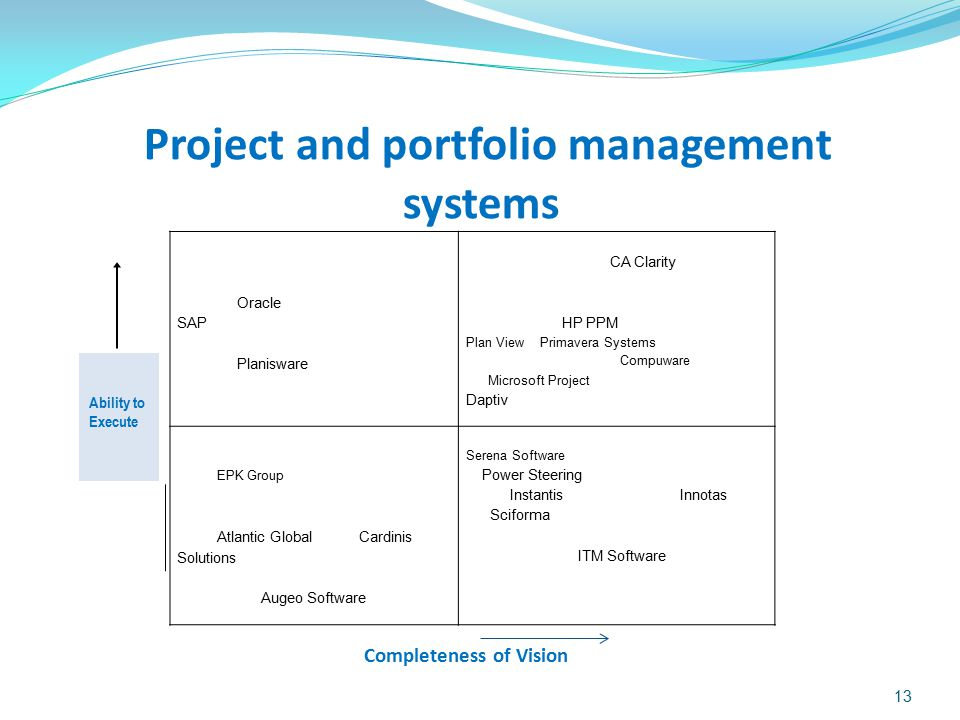 Project and portfolio management systems