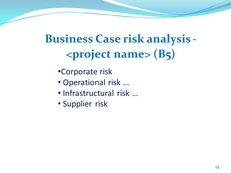 Business Case risk analysis - <project name> (B5)