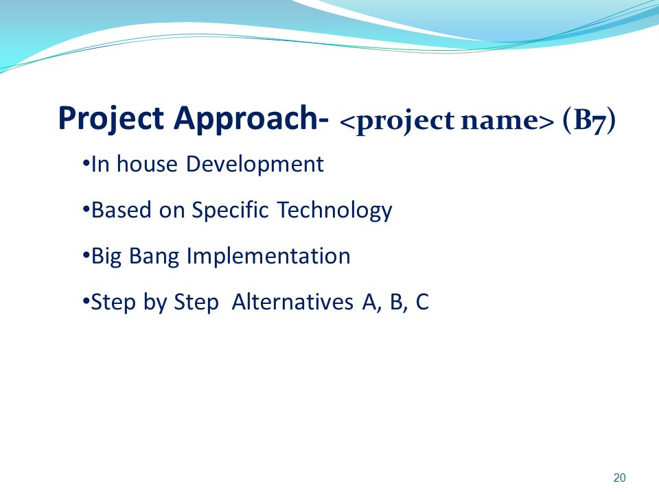 Project Approach- <project name> (B7)