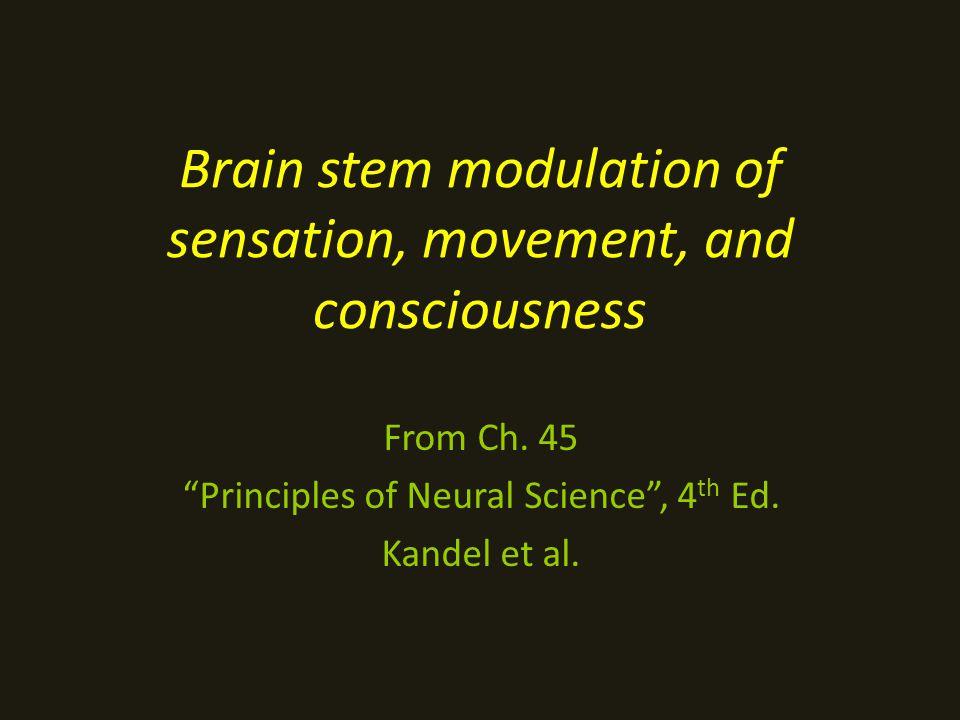 Brain stem modulation of sensation, movement, and consciousness