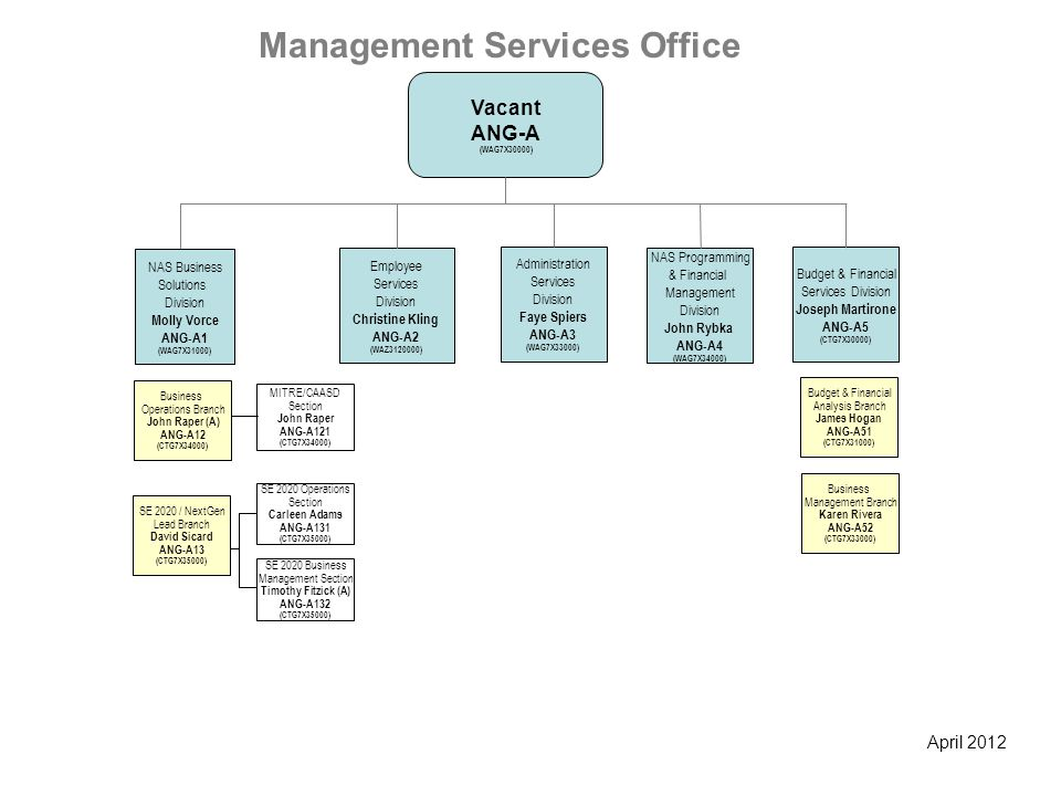 Management Services Office