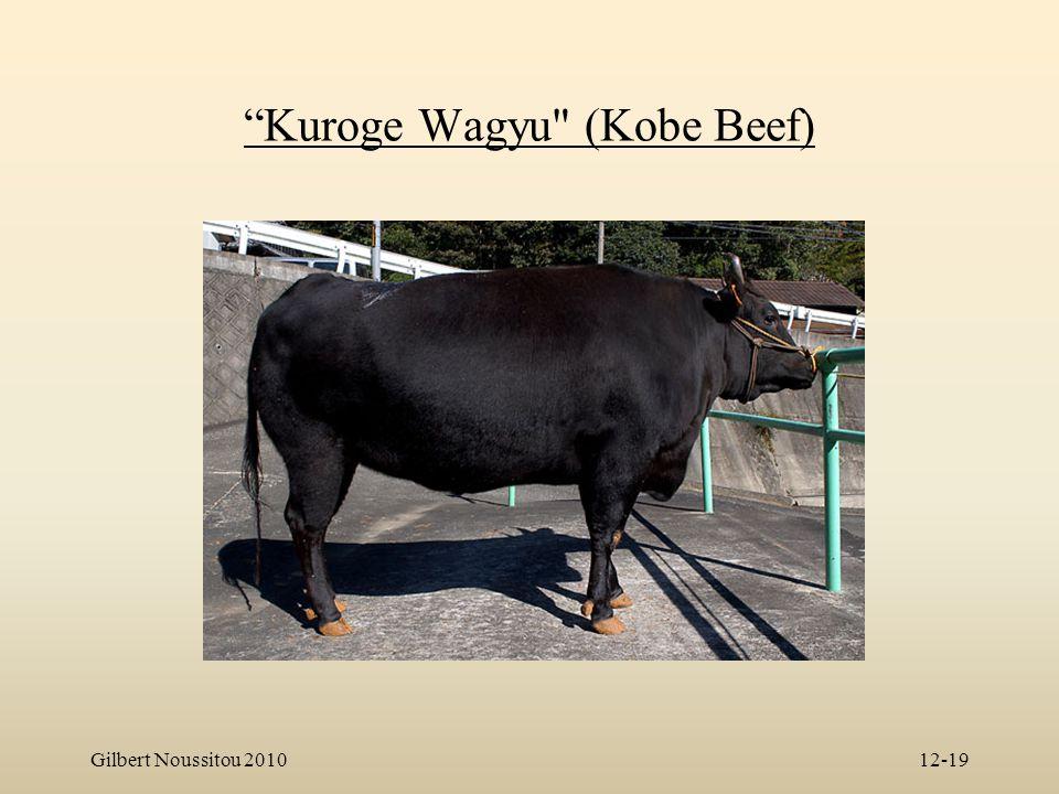 Kuroge Wagyu (Kobe Beef)