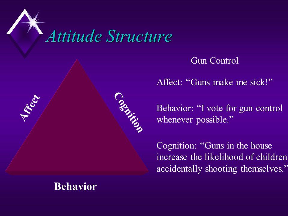 Attitude Structure Affect Cognition Behavior Gun Control