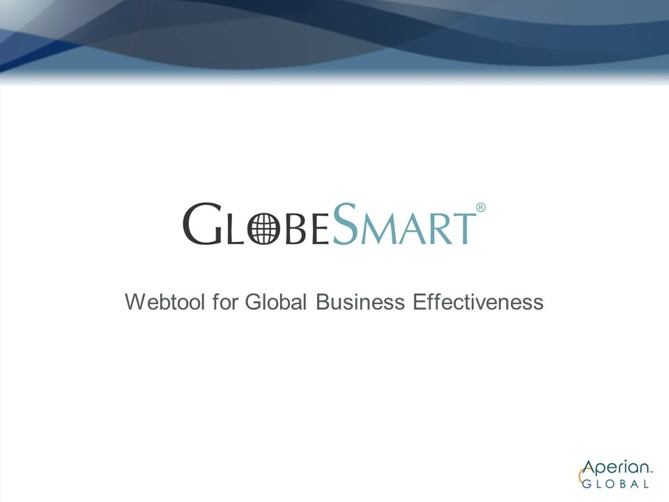Webtool for Global Business Effectiveness