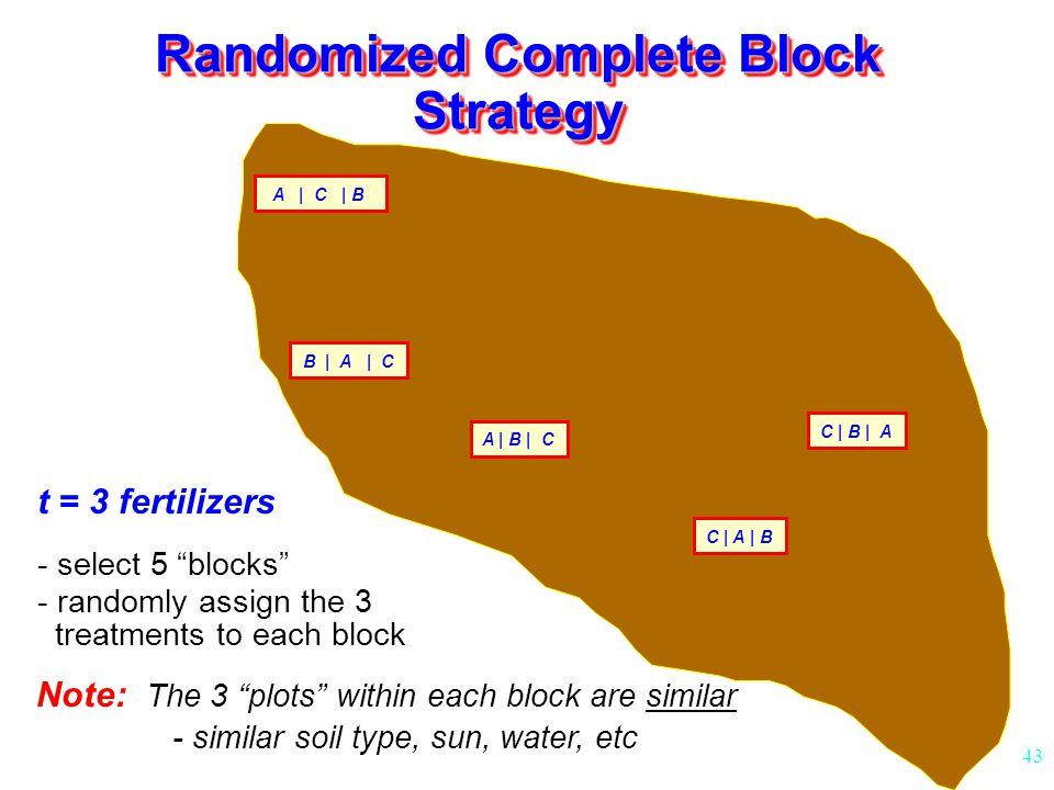 Randomized Complete Block Strategy