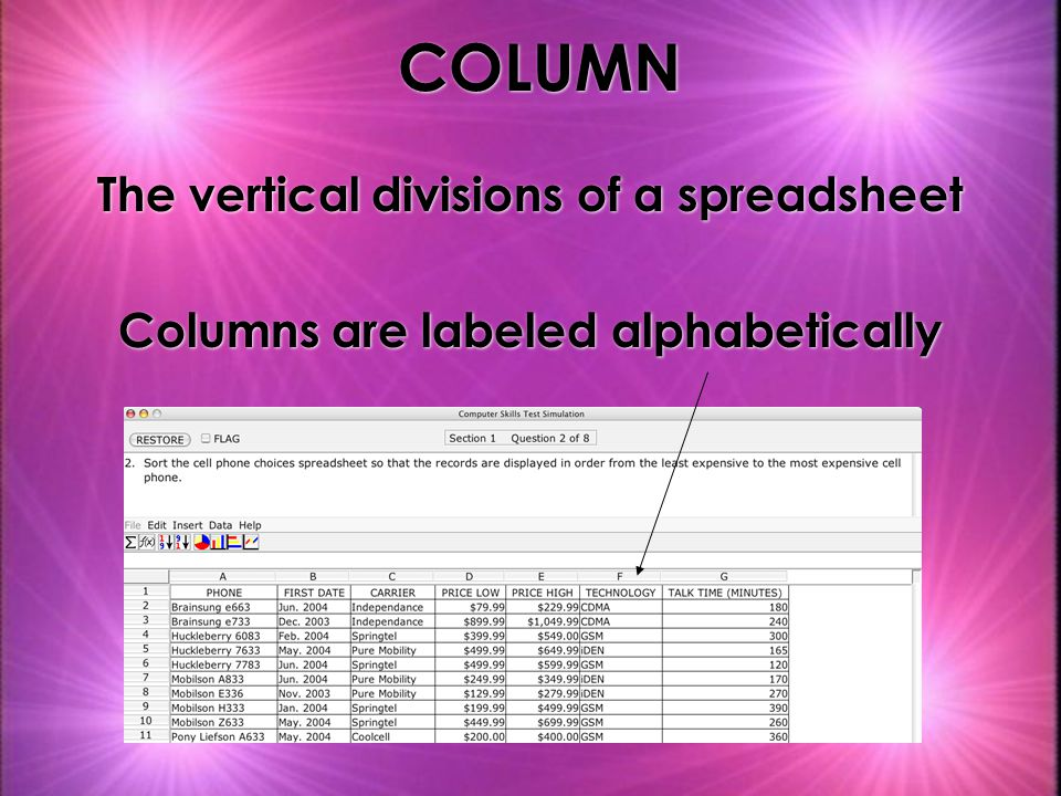 COLUMN The vertical divisions of a spreadsheet