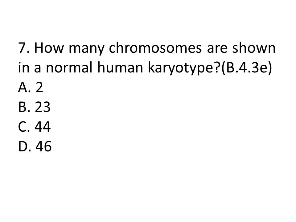 7. How many chromosomes are shown in a normal human karyotype. (B. 4
