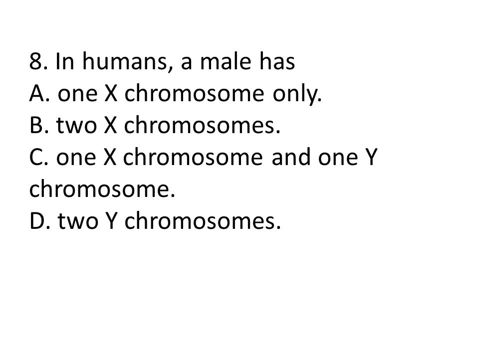 8. In humans, a male has A. one X chromosome only.