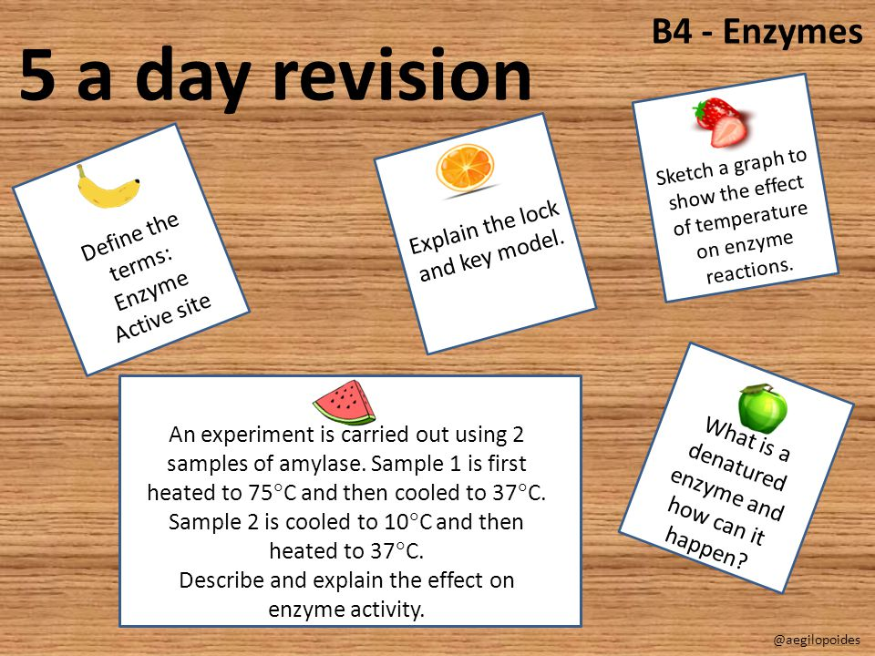 5 a day revision B4 - Enzymes Explain the lock and key model.